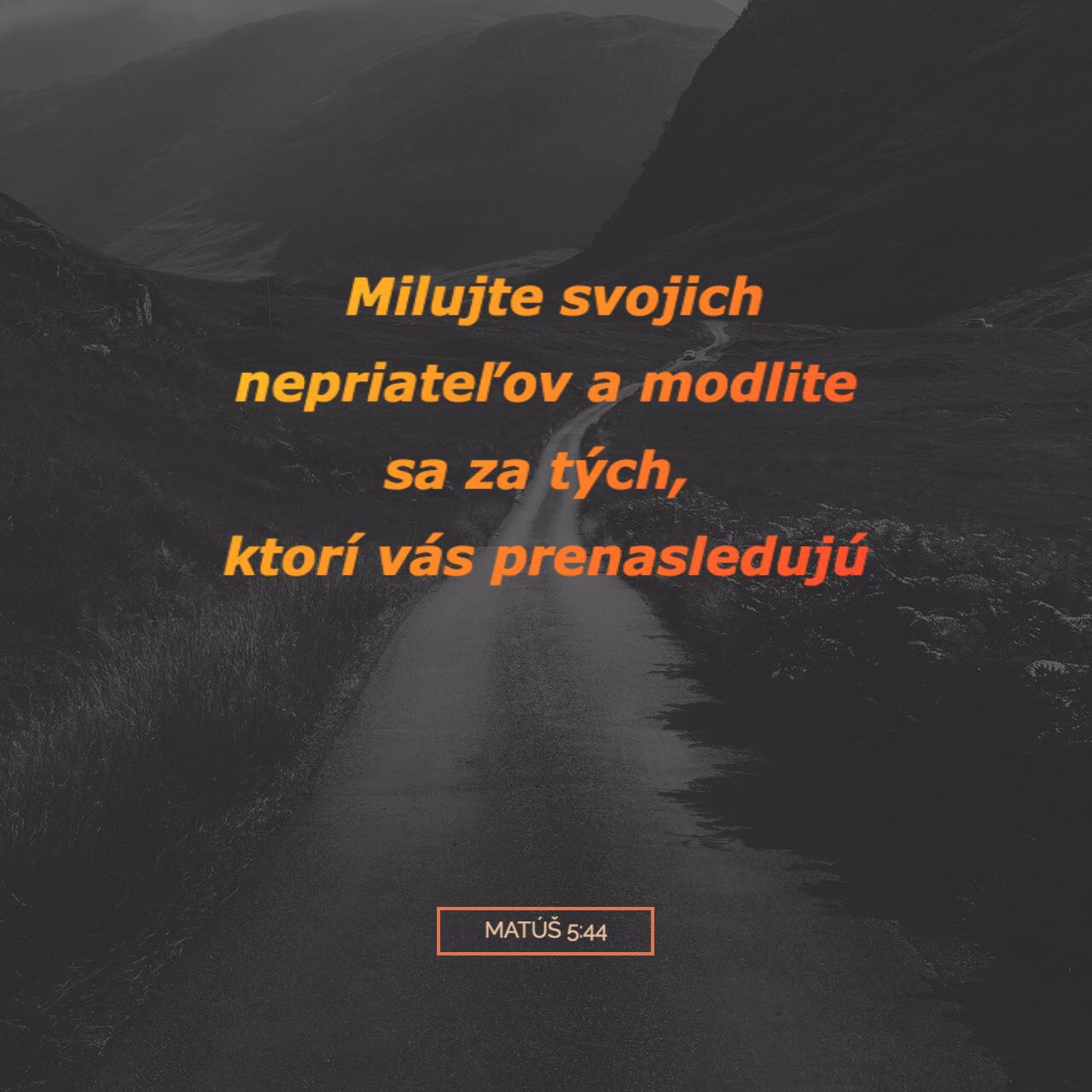 Image_1__31_.jpg